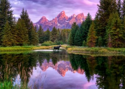 Schwabacher Landing Grand Teton National Park, Wyoming