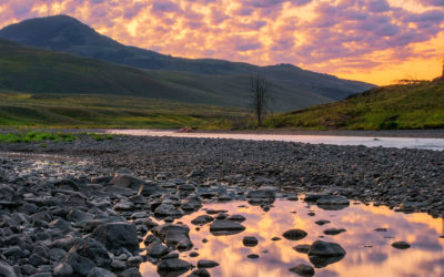 Some Lessons Learned Photographing Lamar Valley in Yellowstone National Park