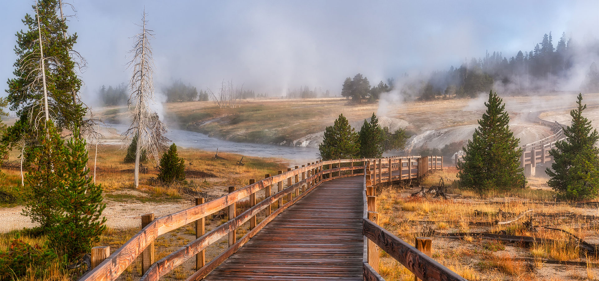 Foogy Morning in Yellowstone National Park