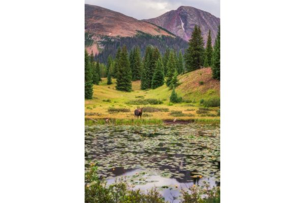 Molas Pass Silverton Colorado Fine Prints Wall Art