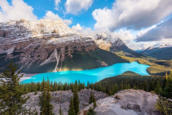 Peyto Lake Banff National Park Fine Prints Wall Art